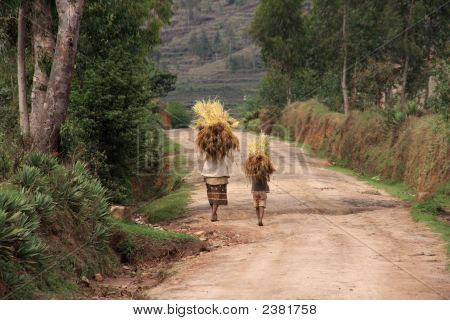 Malagsy People Carrying Loads On Their Heads