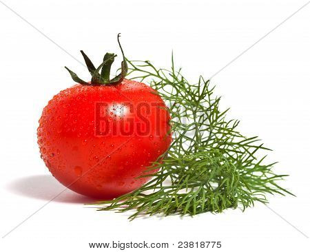 Fresh Tomato And Fennel