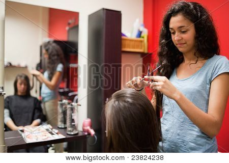 Female Hairdresser Cutting Hair