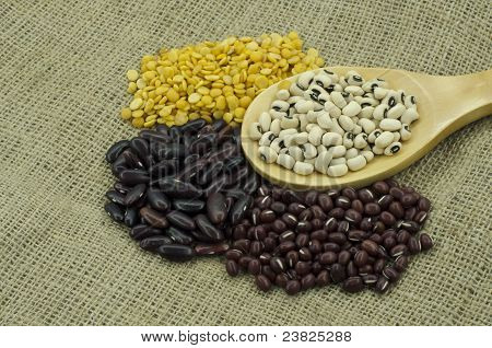 The Various Sorted Dry Legumes In Different Colors