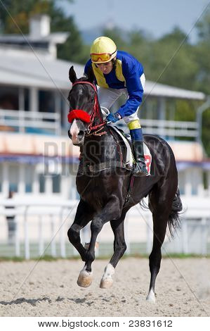 A Jockey Riding A Dark Bay Horse On The Race