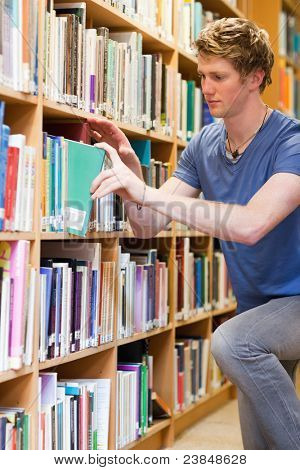 Portrait of a male student choosing a book in a library