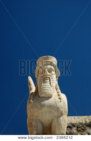 Bearded Sphinxs