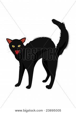Zischenden Katze