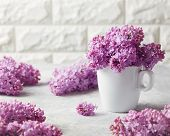 A bunch of fresh lilac at home. Lilac (Syringa) flowers in white mug on table. poster