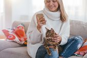 Cosy Home Atmosphere. Family Pet. Girl Petting Her Bengal Cat While Looking At Her Phone. poster