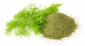 Dried Dill Weed And Fresh Dill Weed Isolated On White Background poster