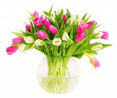 Tulip Flowers In Glass Vase Isolated Over White Background, Bunch Of Colorful Tulips In Flower Pot poster