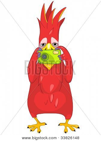 Cartoon Character Funny Parrot Isolated on White Background. Tourist Photographer. Vector EPS 10.