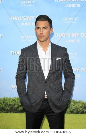LOS  ANGELES- JUN 4: Milo Ventimiglia at the premiere of Columbia Pictures' 'That's My Boy' at the Regency Village Theater on June 4, 2012 in Los Angeles, California