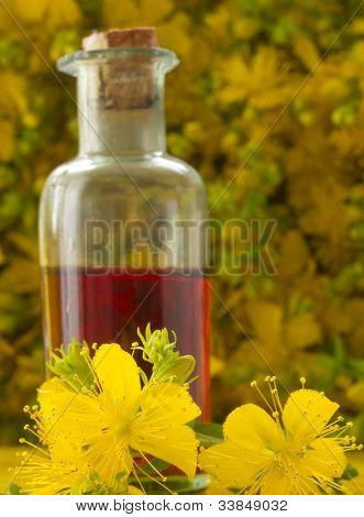 oil of St John's wort