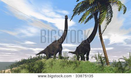 brachiosaurus on grass terrain