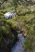 Alltan Mhic Eoghainn Waterfall Viewed From Beinn Eighe Mountain Trail Above Loch Maree, North West H poster