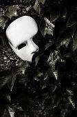 image of pantomime  - Masquerade  - JPG