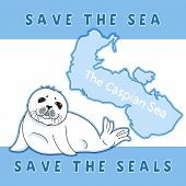 Cute Fur Seal, Save The Seals Slogan, Baby Nerpa On Caspian Sea Background, Animal Extinction Proble poster