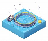 Vector Isometric Feeding Fish At Fish Farm. Fish Farm Worker In Inflatable Boat Feeding Fish Throwin poster