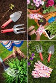 Set of gardening images