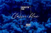 Classic Blue Spruce Background With Color Of The 2020 Year, Pantone Pallette With Classic Blue Swatc poster