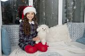 Lets Play. Happy Child Got Toy Gift For Christmas. Little Girl Play With Toy Dog. Santa Gift Or Pres poster