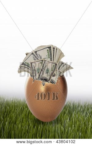 401 Retirement Nest Egg.