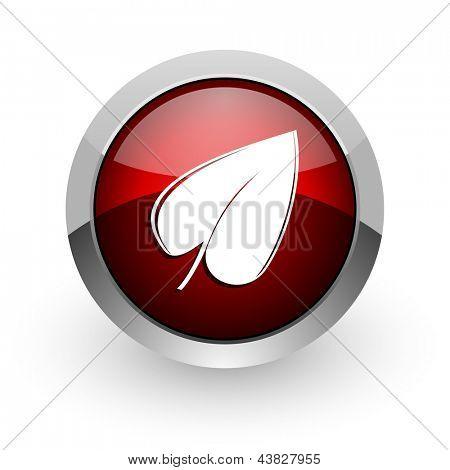 leaf red circle web glossy icon