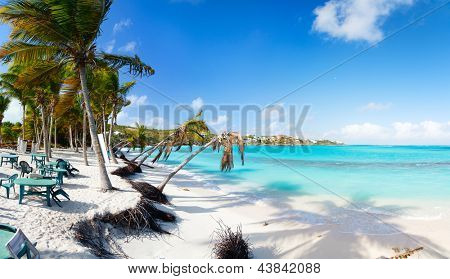 Beautiful beach framed with palms and seaside cafe on Caribbean island of Anguilla