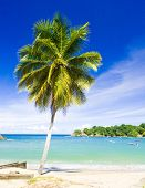 stock photo of greater antilles  - Parlatuvier Bay - JPG