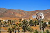 landscape of Antigua, in Fuerteventura, Canary Islands, Spain, with a windpump in the foreground