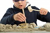 Child archaeologist excavating for dinosaur fossil isolated on white background