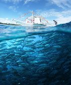 image of school fish  - Collage with school of Jack fish underwater and traditional boat on a surface at sunny day - JPG