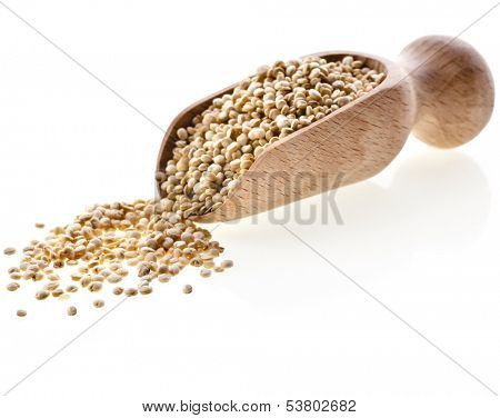 quinoa seed grain  in a wooden bowl scoop close up isolated on a white background