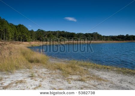 Lakeside Vista