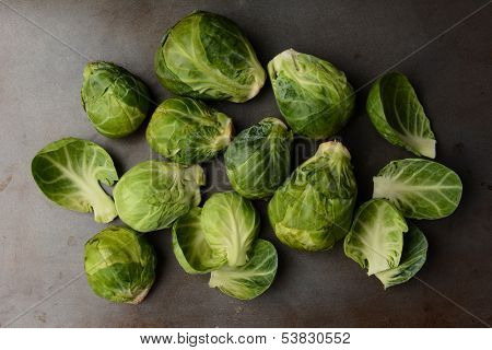 Fresh picked Brussels Sprouts arranged on a metal cooking sheet. Horizontal format.