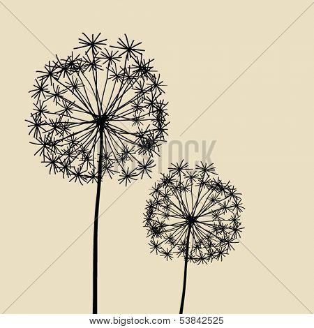 Floral Elements for design, dandelions. EPS10 Vector illustration