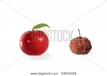 Fresh and rotten apple isolated on white