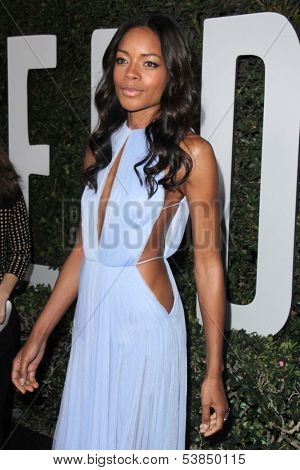 LOS ANGELES - NOV 11:  Naomie Harris at the ???