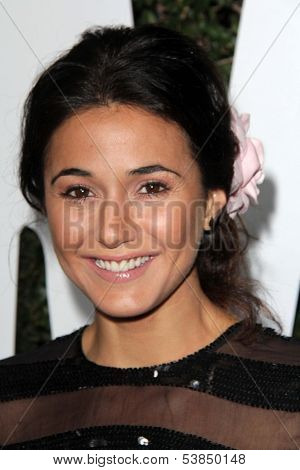 LOS ANGELES - NOV 11:  Emmanuelle Chriqui at the ???