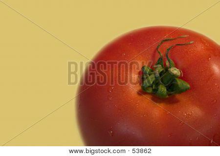 Tomato On Gold