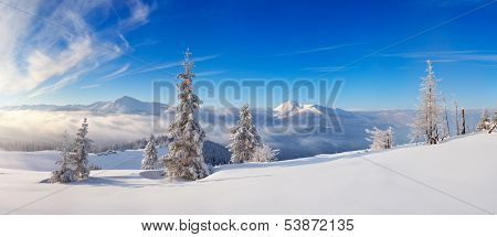 Landscape panorama of a frosty day in the mountains. Ukraine, Carpathian mountains, view of the mountain range Chornohora