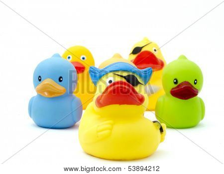 rubber duck,s
