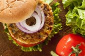 foto of veggie burger  - Organic Grilled Black Bean Burger with Tomato and Lettuce - JPG