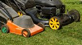 stock photo of grass-cutter  - two lawnmower in the garden lawn the grass  - JPG