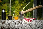 image of ax  - Ax with plastic cups in forest in autumn - JPG