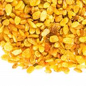 Yellow Golden Shiny Raisins Isolated On White Background, Nacro. Yellow Great Raisins May Use As Bac