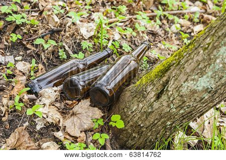 Three brown glass bottles in park.