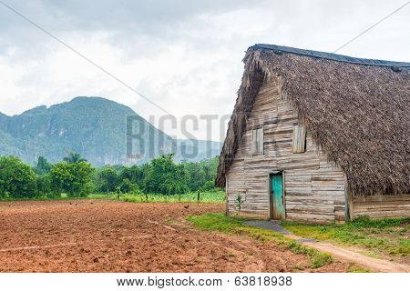 Barn used for curing tobacco at the Vinales valley in Cuba