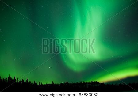 Aurora Borealis Substorm Swirls Over Boreal Forest