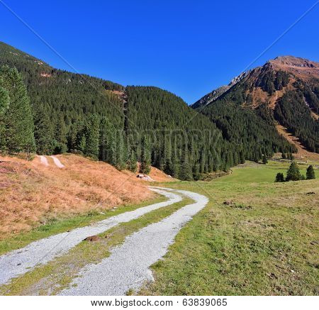Sunny autumn day. Valley in the mountains of Austria. The dirt path winds between yellowed fields