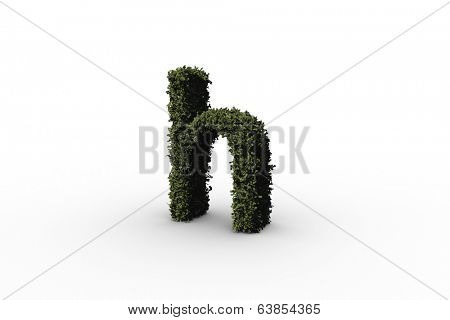 Lower case letter h made of leaves on white background