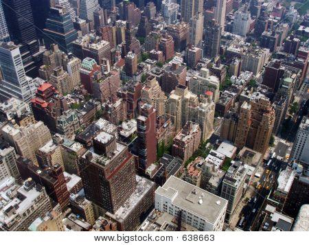 poster of Big City Jungle